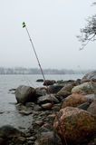 Whitefish fishing. Fishing whitefish. Bottom fishing aka legering. Rods, rocks, sea Royalty Free Stock Photo
