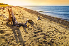 Whitefish Point, Michigan Royalty Free Stock Photo