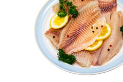 Whitefish Tilapia Fish Raw Fillet Isolated royalty free stock images