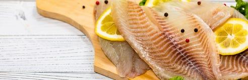 Whitefish Tilapia Fish Raw Fillet royalty free stock image