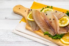 Whitefish Tilapia Fish Raw Fillet royalty free stock photo