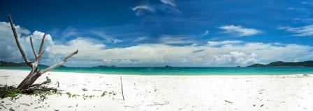 Whitehaven海滩澳大利亚全景 免版税库存图片