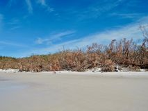 Whitehaven Beach after cyclone Whitsunday Islands, Australia royalty free stock photography