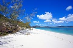 Whitehaven plaża Whitsundays Zdjęcie Royalty Free