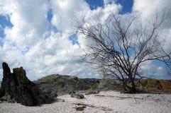 Whitehaven plaży widok Zdjęcie Stock