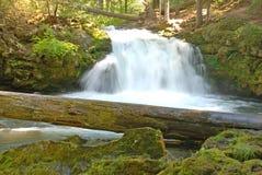 Whitehorse Falls Royalty Free Stock Image