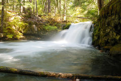 Whitehorse Falls Royalty Free Stock Images
