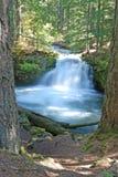 Whitehorse Falls Royalty Free Stock Photo