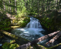 Whitehorse Falls, Oregon Royalty Free Stock Images