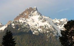 Whitehorse Mountain Top Sauk River Valley North Cascade Mountain Royalty Free Stock Image