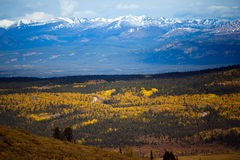 Whitehorse, paesaggio di caduta del Yukon fotografia stock libera da diritti