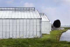 Whitened greenhouses Stock Photos