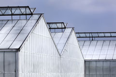 Whitened greenhouses Royalty Free Stock Photo