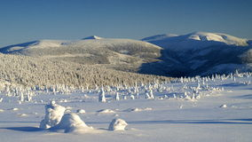 Whiteness in Giant Mountains / Karkonosze Royalty Free Stock Photography