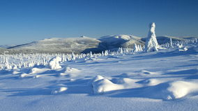 Whiteness in Giant Mountains / Karkonosze royalty free stock photo