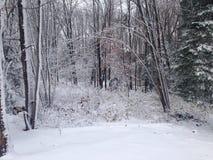 whiteout fotografie stock