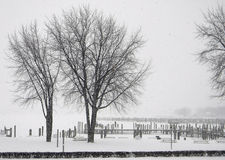 Whiteout-Wetter Stockbild