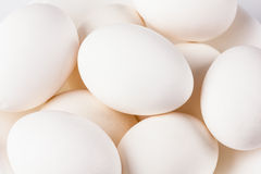 Whites chicken eggs close-up Royalty Free Stock Image