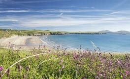 Παραλία Whitesands στη φωτεινή θερινή ημέρα στοκ εικόνες