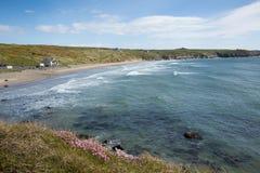 Whitesands zatoka St Davids Pembrokeshire Zachodni Walia UK Zdjęcia Royalty Free