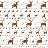 Whitetail background 3 Royalty Free Stock Images