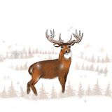 Whitetail buck in the snow. A large whitetail buck standing in the snow vector illustration