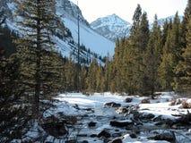 Whitetail Peak, Montana. Lake Fork River with Whitetail Peak in the background stock photos
