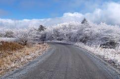 Whitetop berg Arkivfoto