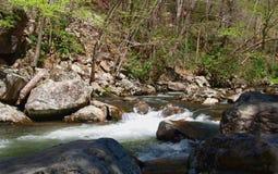 Whitetop Laurel Creek Photo libre de droits
