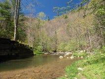 Whitetop Laurel Creek fotografie stock libere da diritti