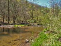 Whitetop Laurel Creek le long de Virginia Creeper Trail photo stock