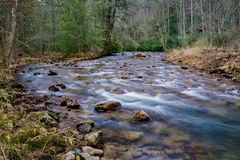 Whitetop Laurel Creek. A local trout stream located on RT 58, Damascus, Virginia, USA stock photography
