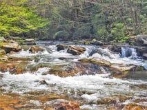 Whitetop Laurel Creek sur Virginia Creeper Trail images libres de droits