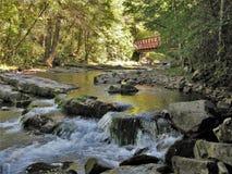 Whitetop Laurel Creek Waterfall Stock Foto