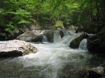 Whitetop Laurel Creek Waterfall Royalty-vrije Stock Fotografie