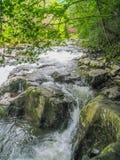 Whitetop Laurel Creek Waterfall i Virginia fotografering för bildbyråer