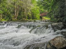 Whitetop Laurel Creek Waterfall i Virginia arkivfoton