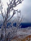 Whitetop Mountain Stock Image