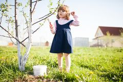 Whitewash of the tree trunk, little girl working in the garden. Stock Photo