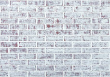 Whitewashed Brick Wall Stock Photography