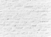 Whitewashed brick wall Stock Images