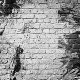 Whitewashed brick wall, textured background Stock Images