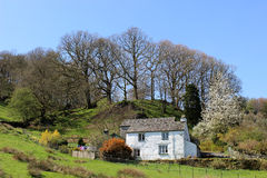 Whitewashed cottage in the English Lake District. Traditional whitewashed cottage in the countryside in the English Lake District in Cumbria. The cottage is to Stock Images