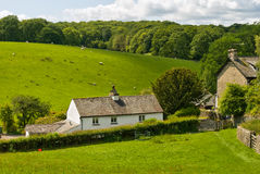 Whitewashed cottage in rural setting. Royalty Free Stock Photo