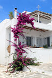 Whitewashed House at Greece Royalty Free Stock Images