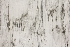 Whitewashed Plywood Royalty Free Stock Images