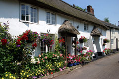 Whitewashed thatched cottages. A row of whitewashed thatched cottages in a Devon village Royalty Free Stock Photography