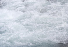 Whitewater. Mistaya river, banff national park Royalty Free Stock Image
