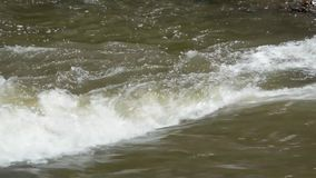 Whitewater stock video