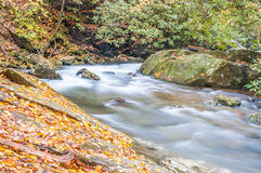 Whitewater Creek. Royalty Free Stock Images